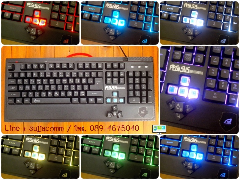 "USB Multi Keyboard ""SIGNO"" (KB-739) PEGASUS (ปรับไฟได้ 7 สี) (Blue Semi Mechanical Rubber Dome Gaming Keyboard)"