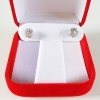 INSPIRE JEWELRY Earring with white gold plated