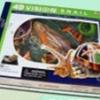 TY-8028 ชุด โมเดลจำลอง (หอยทาก)
