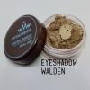 ขนาดเล็ก MMUMANIA Photogenic Eyeshadow อายแชโดว์สี Walden