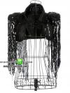 ชุดนักร้องเสื้อกั๊กสีดำบ่าแต่งระบายเลื่อม(พร้อมส่ง)