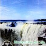 หนังสือเรียนพิเศษ Biobeam OPD : Biochemistry & Cells