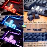 "USB Multi Keyboard ""NUBWO"" (X8 Alpha) (ปรับไฟได้ 3 สี)"
