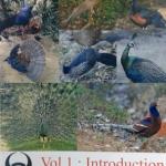 หนังสือหมอพิชญ์ไบโอบีม Basic Biology (OPD) Vol.1 : Introduction