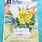 ►เดอะเบรน◄ TH 8027 ภาษาไทย ป.6 ภาษาพาที สรุปบทความอ่านนอกเวลา ระดับชั้น ป.6 มีแบบฝึกหัดประจำบท มีจดเฉลยครบเกือบทุกข้อ หนังสือมีขนาด 17.5 *25 *0.3 ซม.