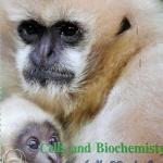 หนังสือ Biobeam ICU Course : Cell and Biochemisty (พร้อมเฉลย)