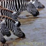 หนังสือหมอพิชญ์ไบโอบีม Basic Biology (OPD) : Human Body Part 1