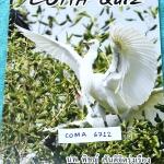 ►หมอพิชญ์ Biobeam◄ COMA 6712 Coma Quiz หนังสือตะลุยโจทย์ชีววิทยา ม.ปลาย รวมโจทย์ครบทุกบท มีโจทย์ทั้งหมด 13 ชุด รวมทั้งหมด 535 ข้อ มีจดเฉลยครบเกือบทุกข้อ จดละเอียดด้วยปากกาสีและดินสอ ลายมือน่าอ่าน