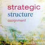 Strategic Structure Assignment ครูพี่แนน