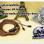 สายหูฟังเกรดพรีเมี่ยม เพียวทองแดง 5N+Jack 2.5 balanced (AK) (MMCX) thumbnail 1