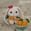 แพทเทิร์นตุ๊กตากระต่ายหูยาว thumbnail 5