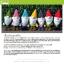 แพทเทิร์นตุ๊กตาถักภูติโนม (Gnomes) thumbnail 2