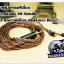 สายหูฟังเกรดพรีเมี่ยม เพียวทองแดง 5N+Jack 2.5 balanced (AK) (MMCX) thumbnail 3