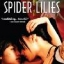 Spider Lilies thumbnail 1