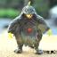 โมเดลสัตว์ประหลาดอุลตราแมน ชุุด1 thumbnail 3