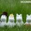 แพทเทิร์นตุ๊กตาถักมูมิน Moomin thumbnail 4