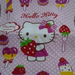 ผ้าห่ม Kitty สตอเบอรี่ 8