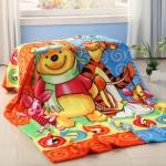 ผ้าห่ม Pooh & Friend 2