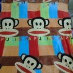 ผ้าห่มนาโน Paul Frank 7