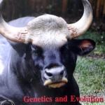 หนังสือ Biobeam ICU Course : Genetics and Evolution ปี 2556 (พร้อมเฉลย)