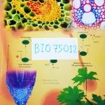 [ยูเรก้า] BIO 75012 อ.เอกฤทธิ์ ชีววิทยา ม.5 หลักสูตร A