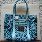 Coach Poppy 3d Op Art Glam Tote Handbag # 14983 Silver Blue