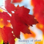 หนังสือไบโอบีม หมอพิชญ์ Biology of Plant (OPD)