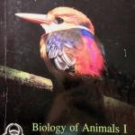 หนังสือ Biobeam : ชีววิทยา Basic Biology (OPD) Animals 1 หมอพิชญ์