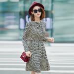 เดรสแฟชั่นผ้าชีฟองพิมพ์ลายสไตล์เกาหลี เอวยางยืด แขนยาว (XL,2XL,3XL,4XL,5XL)